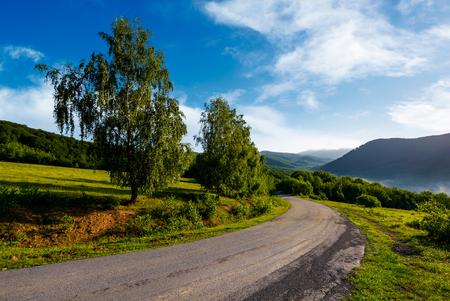 山の田舎道。新鮮な夏の朝に美しい風景