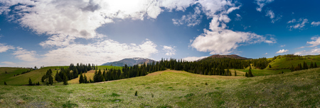 beautiful panorama of mountainous area in spring. spruce forest on grassy hills of Pylypets valley. Borzhava mountain ridge with snowy tops in the distance on a cloudy day Stock Photo