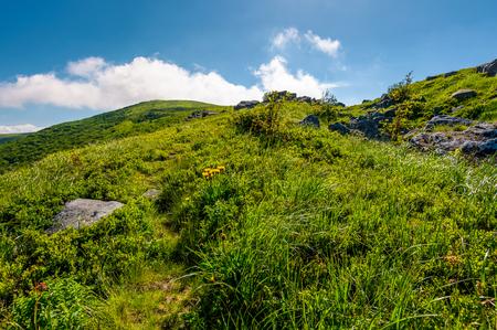 草原の丘の上にそびえ立つふわふわした雲。美しい山岳風景。良い天気予報の概念 写真素材