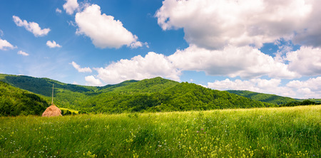 haystack on the grassy field in mountains. beautiful countryside summer scenery in Carpathian mountains under the blue sky with white fluffy clouds Stock Photo