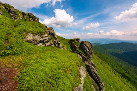 grassy hillside with boulders. lovely summer landscape of Carpathian mountain