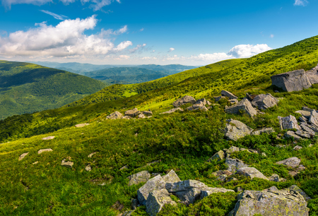 green rolling hills of Carpathian mountains. beautiful summer landscape under blue sky with some clouds. nice place for hike and nature connect