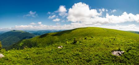 alpine meadows on the mountain top. beautiful summer landscape 写真素材 - 98237971