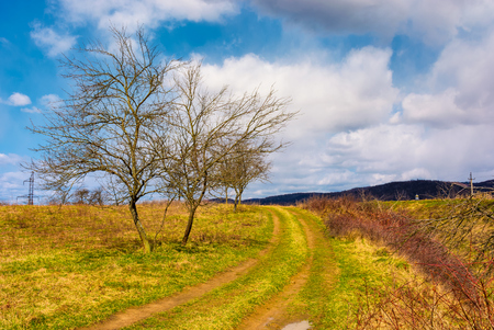 road through orchard in mountainous rural area. lovely countryside springtime scenery. leafles trees on grassy meadow Stock Photo