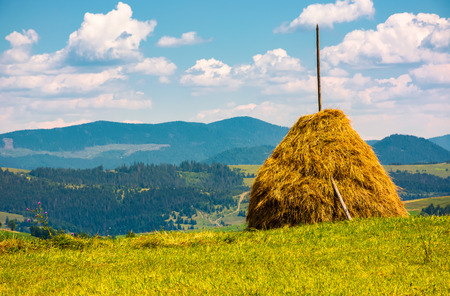 haystack on a grassy field on top of a hill. beautiful mountainous countryside scenery in summer Stock Photo
