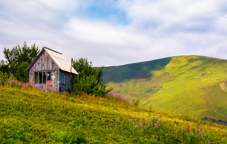 abandoned woodshed on grassy hillside. beautiful summer scenery with purple flowers in mountains Stock Photo - 98803856
