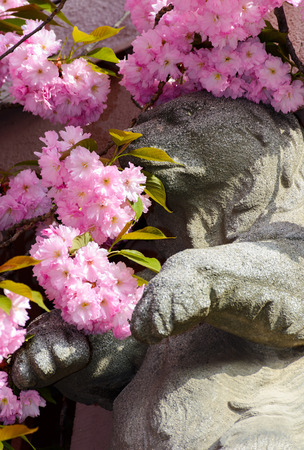 beautiful spring background with sculpture of a bear in pink Sakura flowers  in springtime Stock Photo