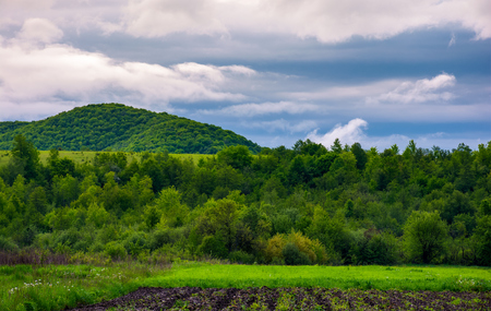 rural fields on a cloudy day. lovely springtime scenery of mountainous countryside Stock Photo