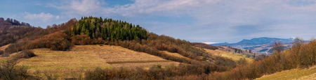 panorama of mountainous area of Carpathians. lovely springtime landscape located near the Volovets town, Ukraine