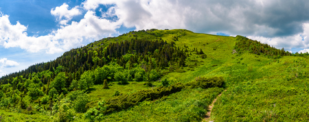 narrow path to the mountain top. beautiful panorama of summer landscape with grassy hills with forested slopes. huge cloud hang over the ridge Stock Photo