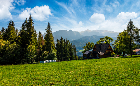 beautiful landscape of Tatra Mountains. location Zakopane village, Poland. lovely scenery with forest on a grassy meadow and a ridge under the gorgeous sky in the distance