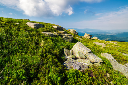 grassy hill with lots of boulders. lovely mountainous landscape. fine summer weather Stock Photo