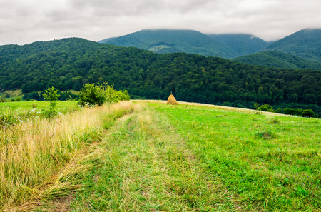 path down the rural field on hillside. lovely countryside scenery with haystack and forested mountains