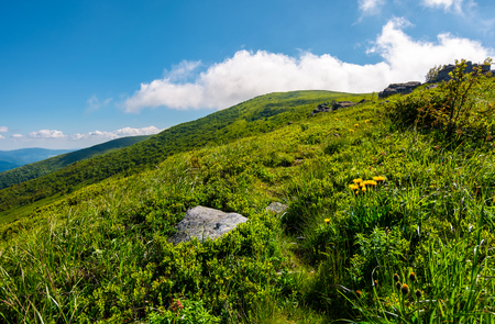 path uphill in to the cloud. lovely mountain landscape in summer. tourism and summer activities concept Stock Photo