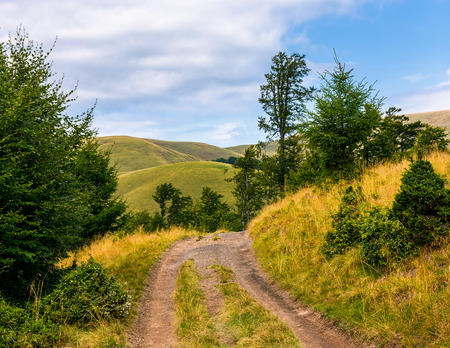 truck road through forested hills of Carpathians. beautiful landscape with Svydovets mountain ridge in the distance Stock Photo