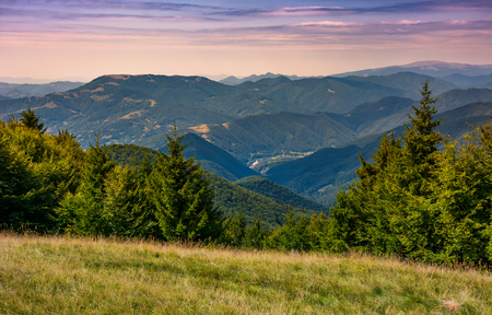forested hills over the Brustury valley at sunset. gorgeous mountainous landscape, TransCarpathia, Ukraine