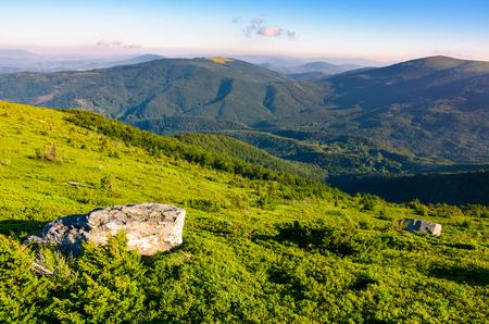 山の中腹の芝生。カルパティア山脈の素敵な夏の風景