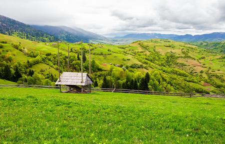農村部の草の丘の上に森林が置かれている。美しい春の田舎の風景。