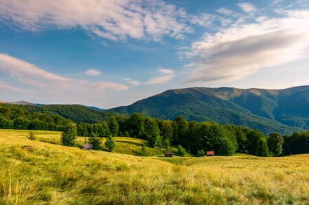 meadow near the forest at the foot of the mountain. wooden sheds in tall grass. beautiful summer evening landscape in the Aretska mountain area, Transcarpathia, Ukraine Stock Photo - 99579506