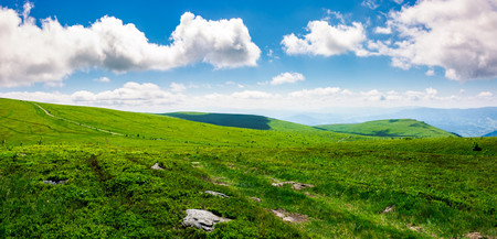 beautiful panoramic mountainous landscape. lovely summer scenery of grassy hills under the  blue sky with clouds Stock Photo