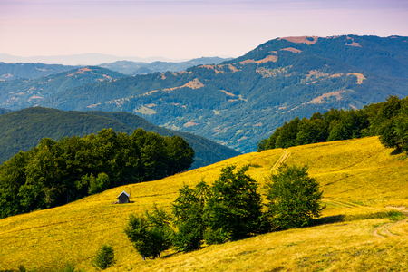 wooden shed on the grassy hillside. beautiful landscape with Krasna mountain ridge in the distance in evening light. Carpathian mountains, Ukraine