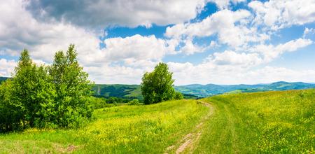 丘の中腹の草原を通る田舎道。カルパティア山脈の美しい夏の風景。青い空に豪華な雲景