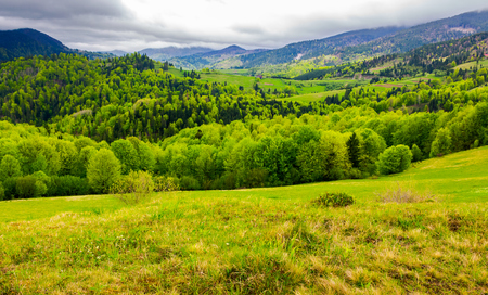 Carpathian rural area in springtime. lovely landscape of mountainous countryside Stock fotó