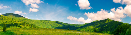 panorama of beautiful countryside in summer. beautiful landscape with forested mountains and grassy field under the blue sky with some clouds