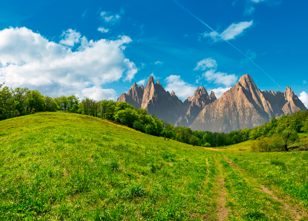 Composite summer landscape. Path through the forest on grassy hillside in High Tatras. beautiful summer weather with blue sky and some clouds Stock Photo