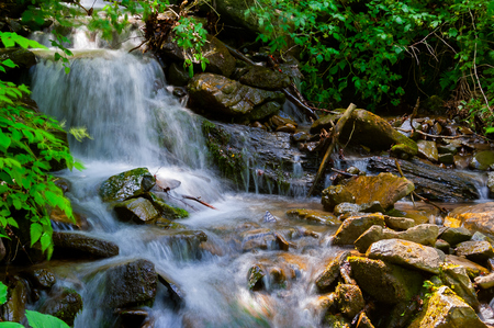 small waterfall in forest. lovely summer nature scenery. fresh and clean environment Stock Photo - 101072910