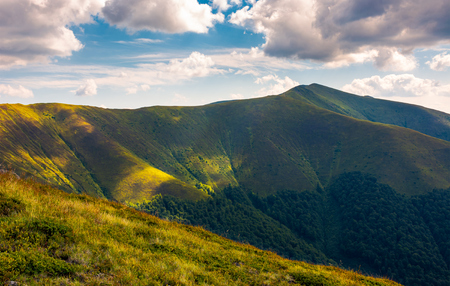 Stij peak under the cloudy summer sky. beautiful landscape of Carpathian mountains. great destination to travel. 스톡 콘텐츠