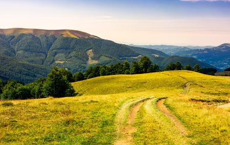 Landstraße durch grasbewachsenen Hang. schöne Sommerlandschaft der Karpaten. Apetska Berg in der Ferne