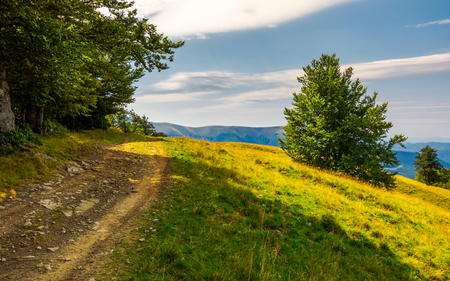 country road through forested hillside. lovely summer scenery of Carpathian mountains. Apetska mountain in the distance