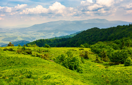 grassy hillside of Carpathian mountains. magnificent Borzhava mountain ridge in the distance. viewing location mountain Pikui. Stock Photo