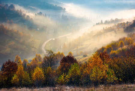 road through the village in foggy valley. gorgeous autumn scenery in Carpathian mountains. beautiful nature background Stock Photo