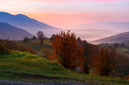 gorgeous purple dawn in mountains. beautiful autumn landscape with fog in the distant valley. trees with red foliage on grassy hillside. location rural area of Synevyr National park, Ukraine Stock Photo