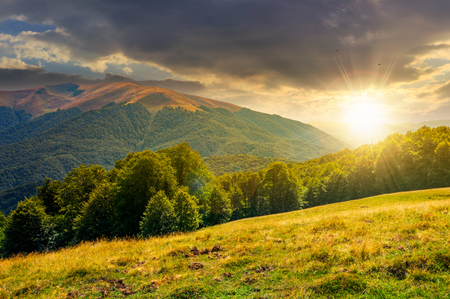 beautiful landscape of Carpathian mountains at sunset. forested hills and Apetska mountain in the distance in summer Stock Photo
