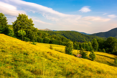 hayshed on a meadow among the beech forest. beautiful evening scenery of Carpathian mountains Ukraine. Svydovets mountain ridge in the far distance under the blue summer sky with some fluffy clouds Stock Photo