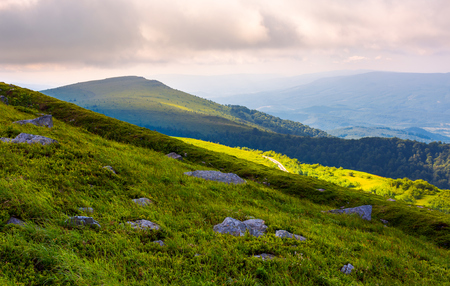 grassy slopes of Runa mountain in the morning. beautiful summer landscape of Carpathian mountains Stock Photo