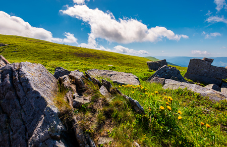 rocks and dandelions on the grassy hillside. peak of Runa mountain in the distance. beautiful summer landscape under the blue sky with clouds