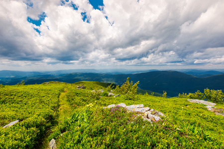 path along the grassy slope on top of a mountain. lovely summer landscape. wonderful place for hiking and camping. cloudy sky above the mountain ridge in the distance Stock Photo