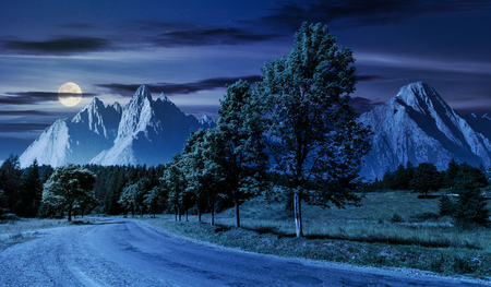 trees along the road in to the mountains at night in full moon. composite mountainous landscape with rocky peaks. beautiful summer nature with gorgeous sky. travel and explore unknown places concept