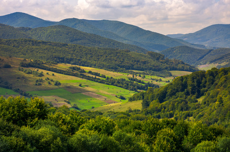 agricultural fields on grassy hills in mountains. beautiful rural landscape of Carpathians Stock Photo
