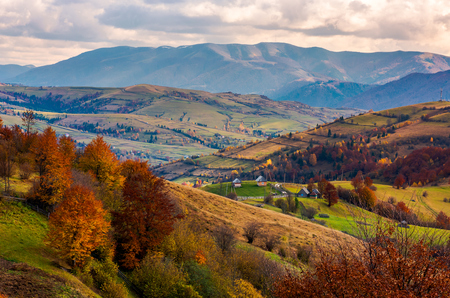 small village on hills in autumn. lovely countryside of Carpathian mountains. mighty ridge in the distance. red foliage on trees
