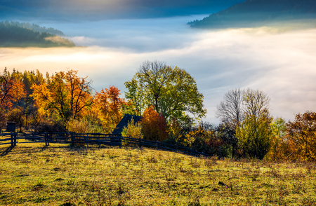 autumn countryside with valley full of thick fog. gorgeous scenery at sunrise in mountainous area. view from the top of a hill