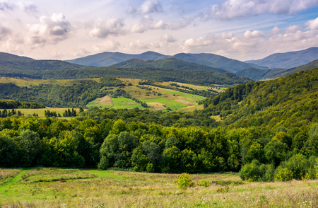 agricultural fields on grassy hills in mountains. beautiful rural landscape of Carpathians Standard-Bild - 103702235