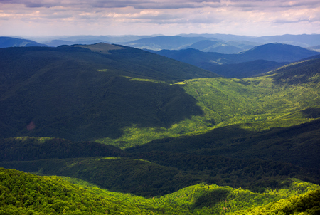 forested rolling hills of Carpathian mountains. gorgeous nature scenery on a cloudy summer day Stock Photo - 104189345