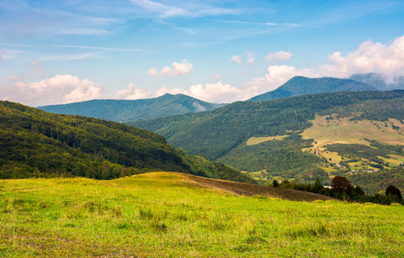 grassy hill in late summer. beautiful mountainous landscape on a cloudy day Stock Photo - 104189350