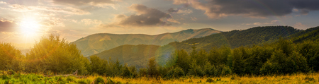 panorama of Carpathian mountains at sunset. beautiful landscape with forested hills and Apetska mountain in the distance.