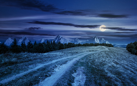road through forested mountain ridge at night in full moon light. beautiful composite landscape with High Tatra mountains in the distance. lovely panorama of summer scenery